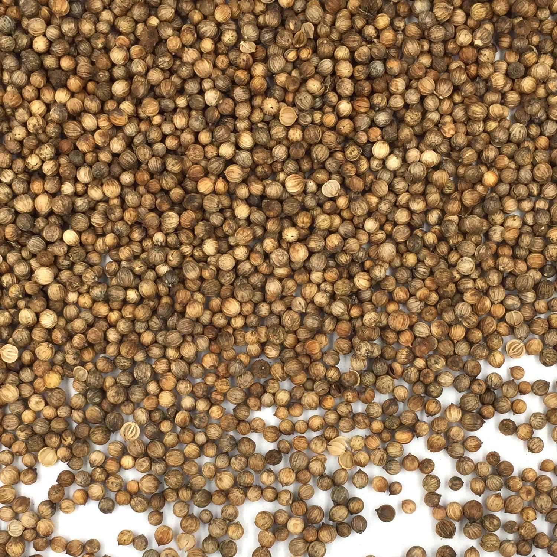 Coriander Seeds, Whole - 1 Lb