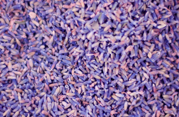 How to Use Dried Lavender Buds: 9 Creative DIY Ideas to Try