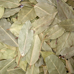 Bay Leaf Whole - 1/2 Lb  (may incur extra shipping costs)
