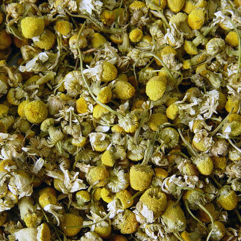 Chamomile Flowers, Whole - 8oz