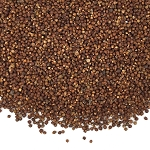 Grains of Paradise, Whole - 8oz
